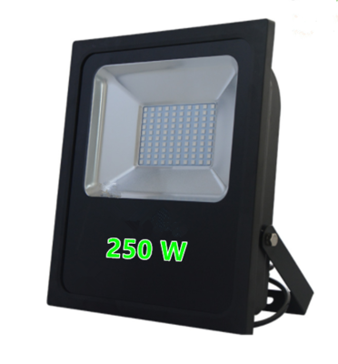 LED FLOODLIGHT PROF. IP65 250W 6000k/Daglicht