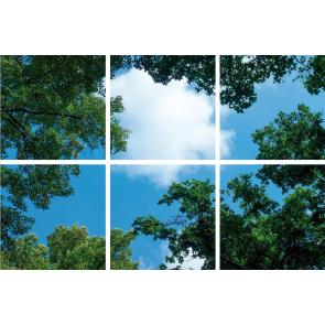 Bos-Wolken plafond complete fotoprint met 6 LED Panelen 36w flikkervrij