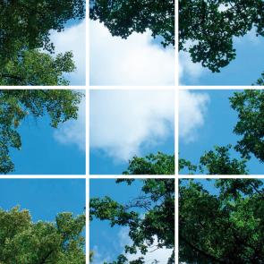 Bos-Wolken plafond complete fotoprint met 9 LED Panelen 36w flikkervrij